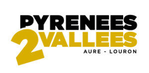 Logo-p2v